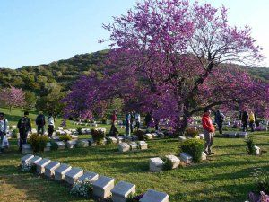 Are you looking for the best Gallipoli tour? We can help you to find it! Just choose the Gallipoli tour and book for it.